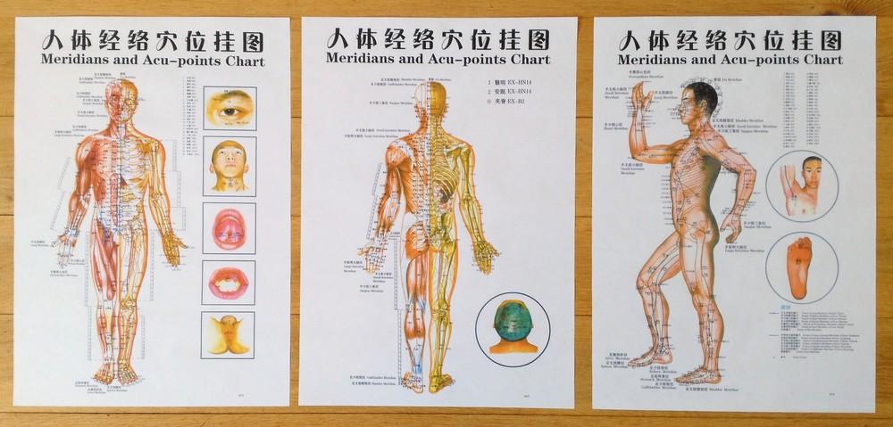 Knihy Akupunkturni Mapa Sada 3 Ks Velikost A2 Erika