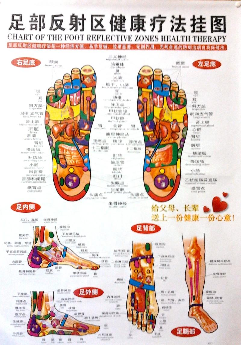 REFLEXNÍ MASÁŽ PLOSKY NOHY uvolnění nohou + povzbuzení celého organismu